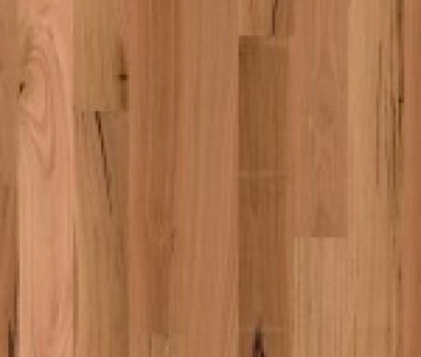 australian-native-blackbutt-1-strip-150x150_3